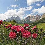 Val di Fassa during summer season... - A lot of good reason to keep moving!